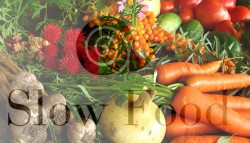 food-2.0-lab-news-conference-slow-food