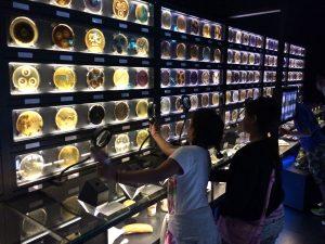 yong-amsterdams-microbe-museum-1200