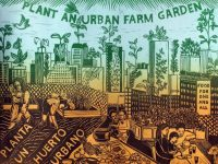 plant-an-urban-farm-garden