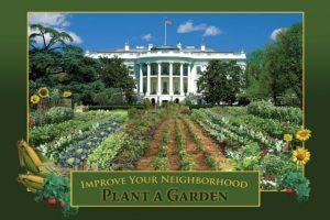 WH garden