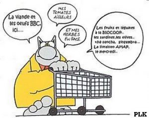Orthorexique Le chat