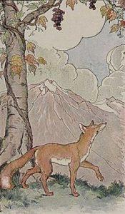 renard et raisin